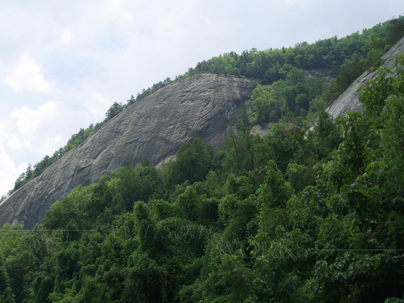 Looking upwards-- where we'd hiked at Chimney Rock S.P.