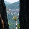 between two trees, Chimney Rock S.P.