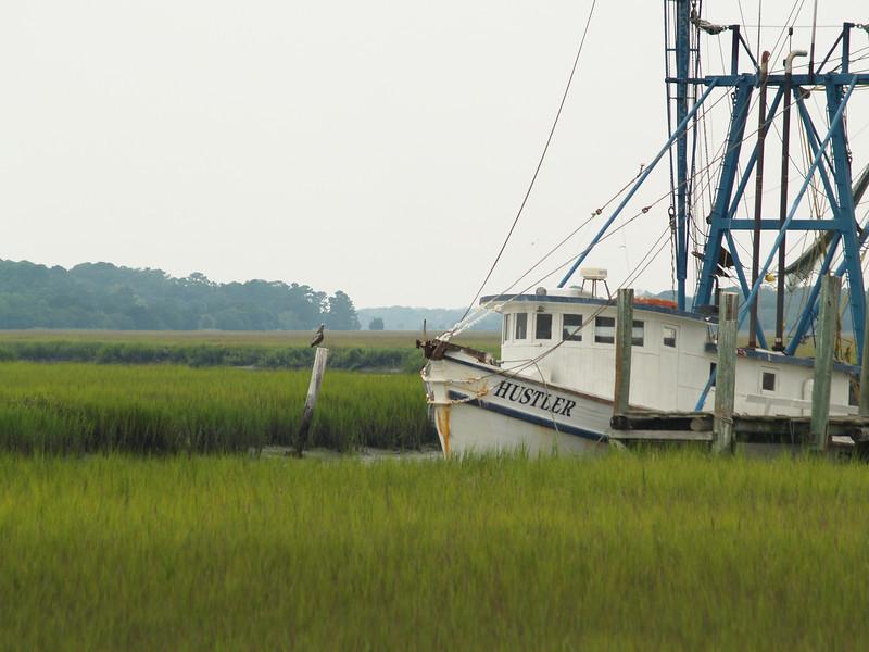 Shrimp boats & pelican