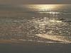 Sparkling sea in sunrise