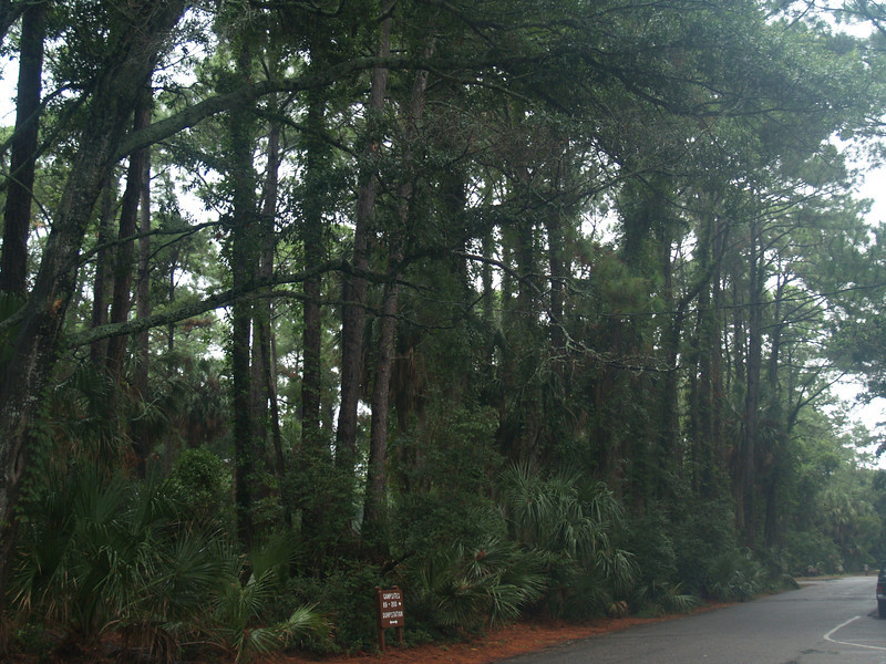 Rainy Day at camp