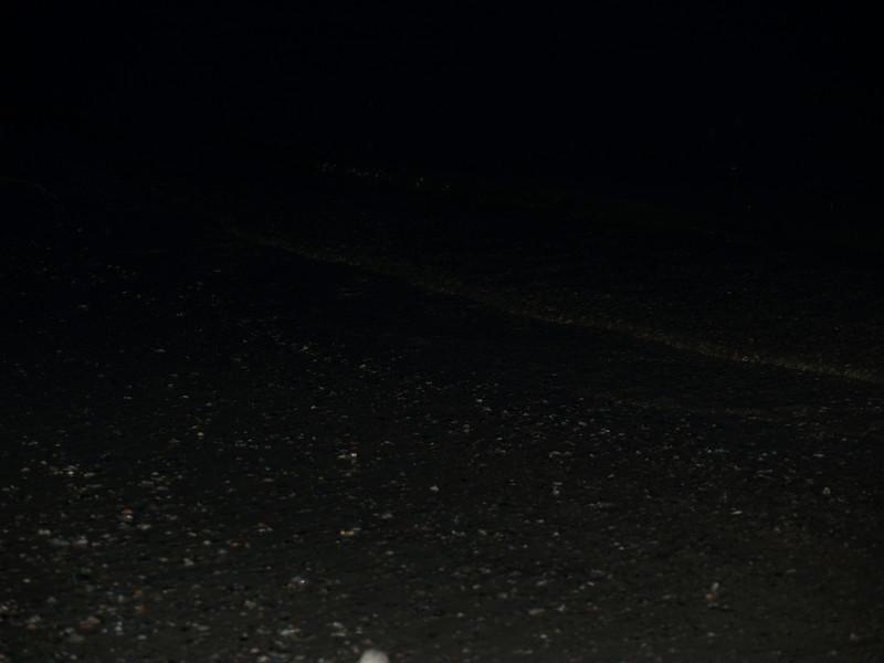 Water's edge at night