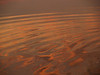 Water's edge, sunrise