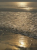 Atlantic surf in early morning golden glow with breaker coming in; Hunting Island State Park, SC (image is part of Hunting Island series)