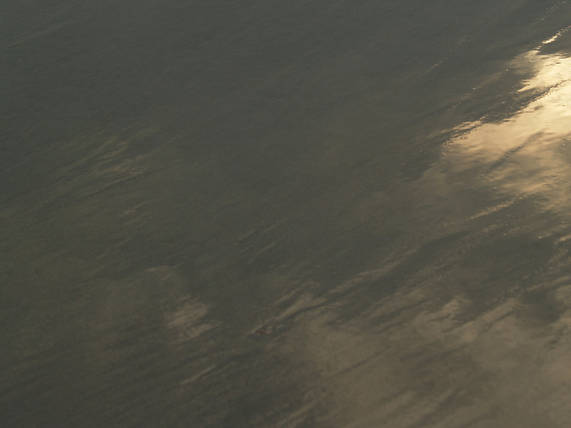 Sunrise reflections in wet sand, Hunting Island