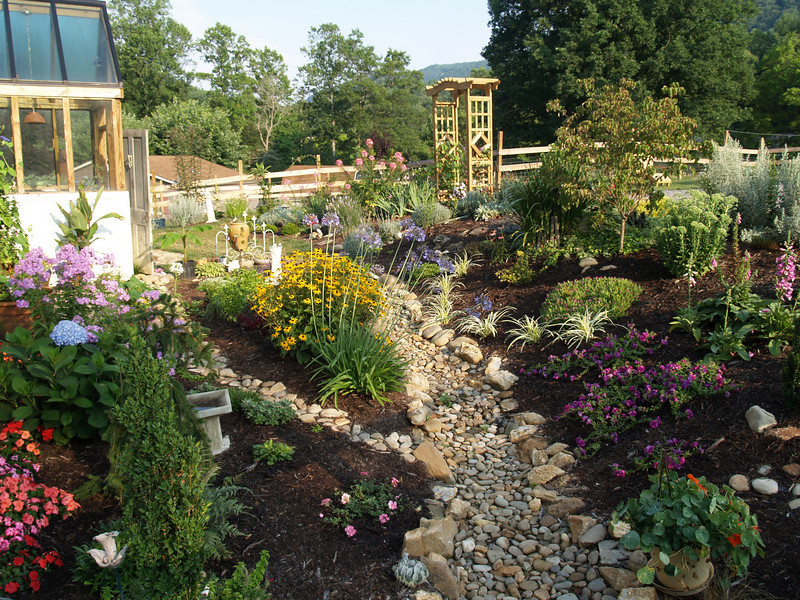 Bonnie's botanical talents, early summer behind the store