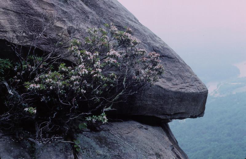 Chimney Rock scene