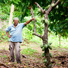 Domingo and his Cacao. Maya Mopan Village, Belize