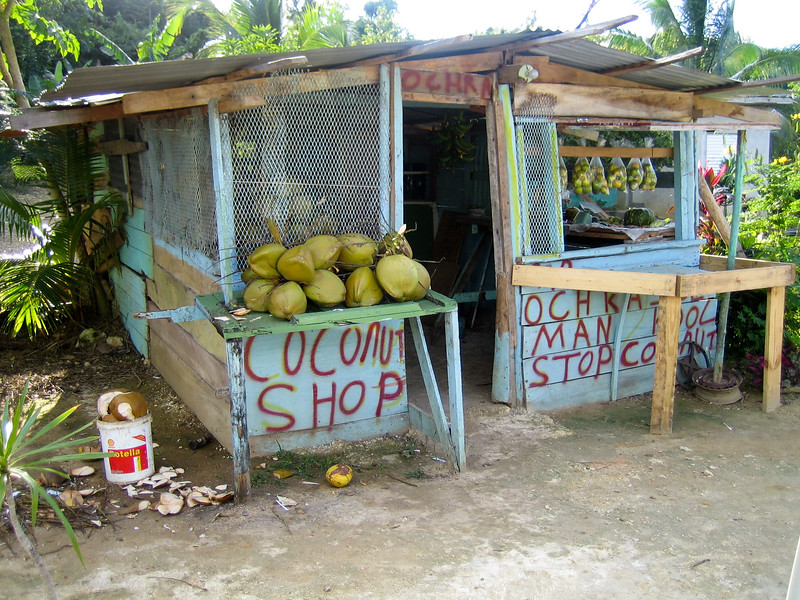 Coconut Shop