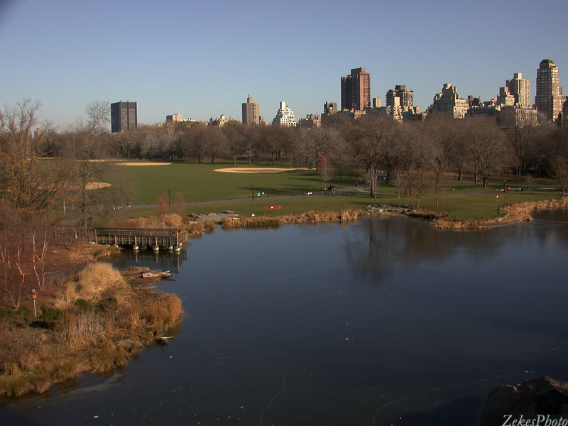 Central Park in mid winter 2001