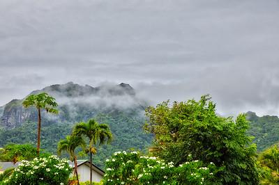 Roratonga in the mist