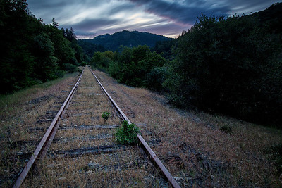 Abandoned Tracks near Spyrock, CA May 2014