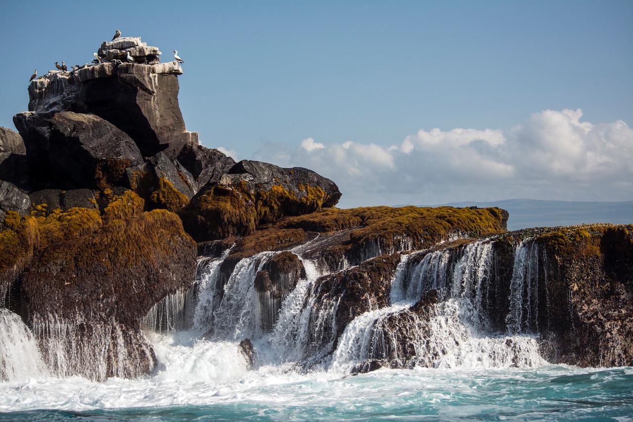 Waves crashing on seabird island