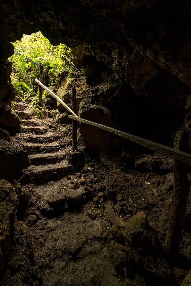 Lava Tunnel Entrance, Reserva El Chato
