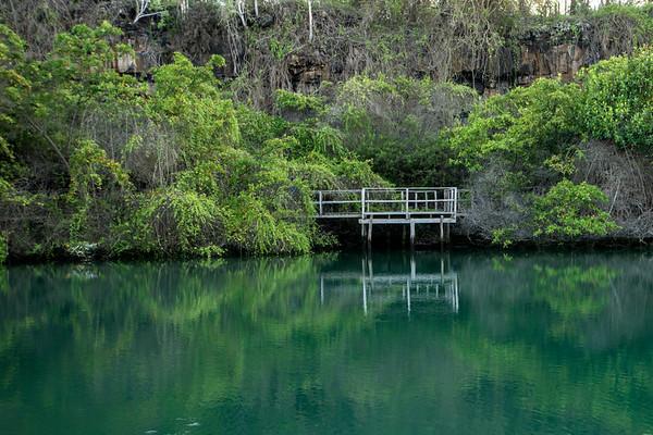 Laguna las Ninfas, Puerto Ayora