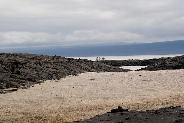 Pahoehoe lava fields