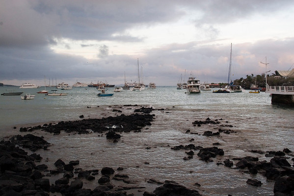 Puerto Ayora harbor at dusk