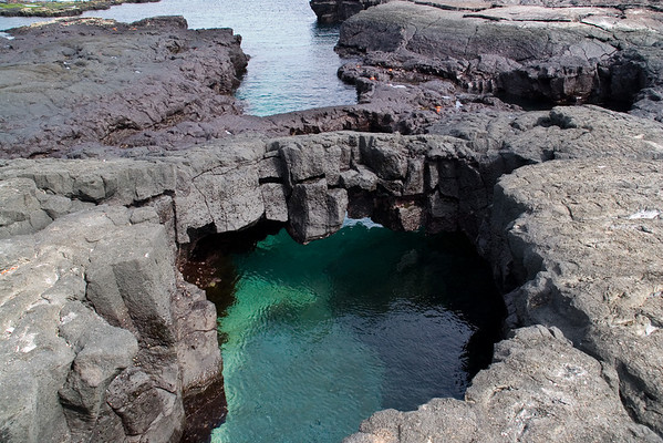 """The Grottos"""