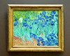 """Van Goghs Irises<br /> The story of the painting is at: <br />  <a href=""""http://www.getty.edu/art/gettyguide/artObjectDetails?artobj=947"""">http://www.getty.edu/art/gettyguide/artObjectDetails?artobj=947</a>"""