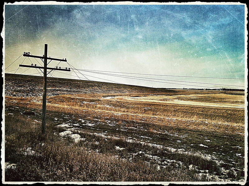 This is one of my favourite prairie shots. The landscape may seem bleak at this time of year but for me the miles and miles of windswept prairie grass looked like home.  Maybe someday I will find myself on a cattle ranch...I CAN drive a mean tractor :)