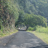 The Hana Road between Mokulau and Mokupapa