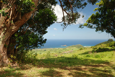 Alau Island in the distance, taken from the upper Hana Ranch lands