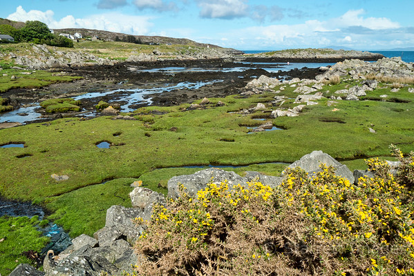 Near the harbor in Colonsay