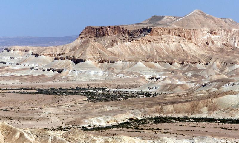 Section of Negev Desert