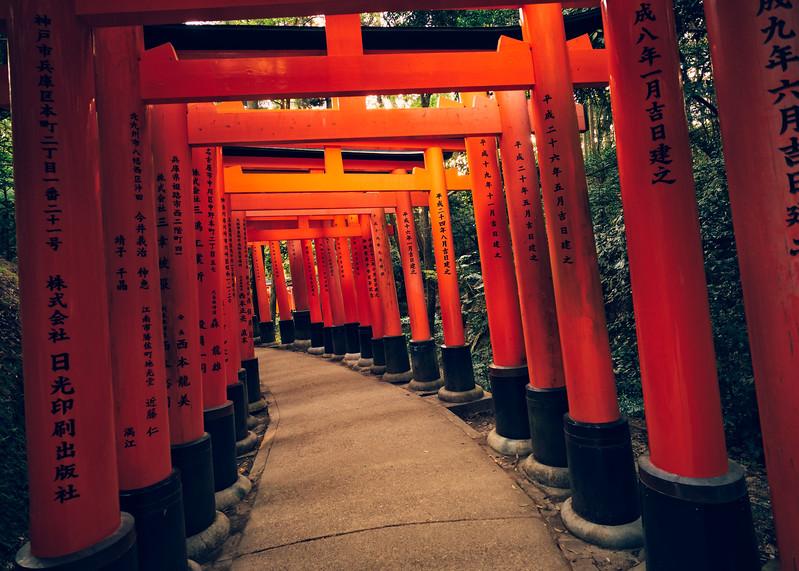Kyoto's Stunning Fushimi-Inari Taisha