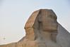 Egypt_2010-656