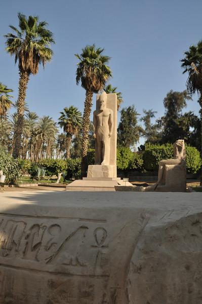 Egypt_2010-372