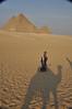 Egypt_2010-482