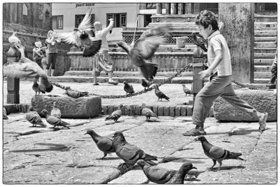 A boy chases away the doves at Patan Square, Kathmandu