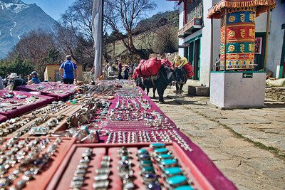 The village of Chhatyang Goth, embodied every village we hit upon the trail. Prayer Wheels, Yaks to transport stuff, Trinkets for tourists!
