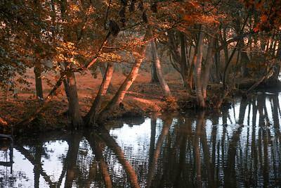 Voorlinden grounds, Netherlands