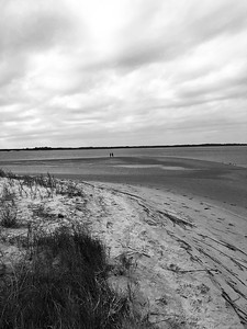 North Edisto River from Seabrook Island, January