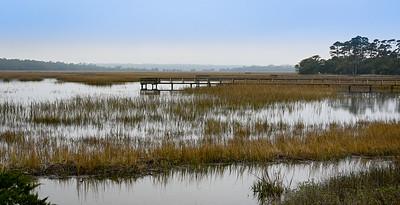 Johns Island, marsh