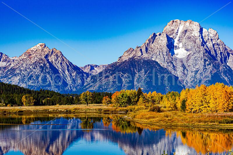 Fall Colors-Grand Teton National Park