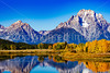 Fall Colors-Grand Teton National Park