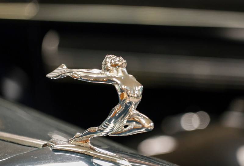 Stylish Hood Ornament