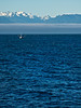 Fishing Boat on the Strait of Juan de Fuca