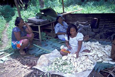 Trukese women preparing breadfruit. Truk Lagoon, 1984