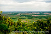 View from Top of Steptoe Butte
