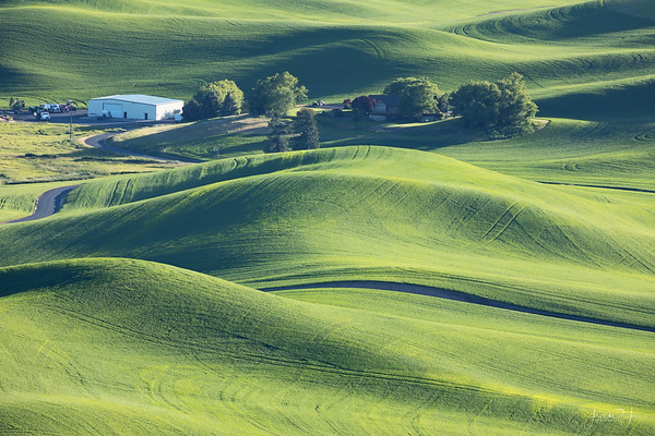 Steptoe Butte<br /> Palouse, WA<br /> 2018