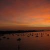 Pre-sunrise in Panama