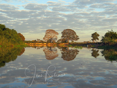 We took an early morning boat ride before leaving the Mato Grosso Hotel. Brazil Pantanal.