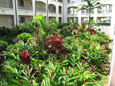 270 - courtyard