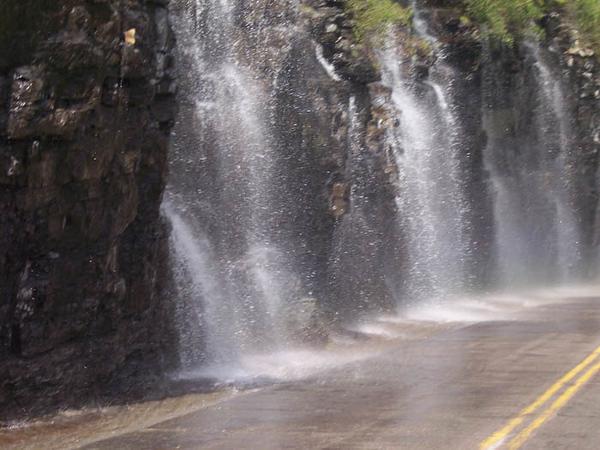 the Weeping Wall, Glacier Nat'l Park