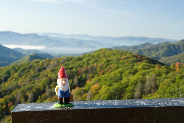 The Roaming Gnome