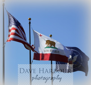 Flags at Reagan Library, Simi Valley: US, California and Presidential